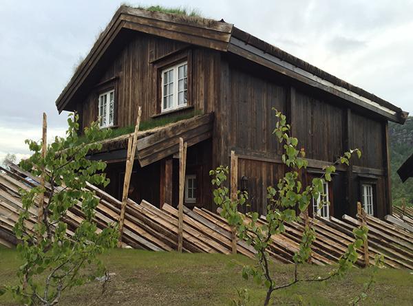 Bygge-hytteelement